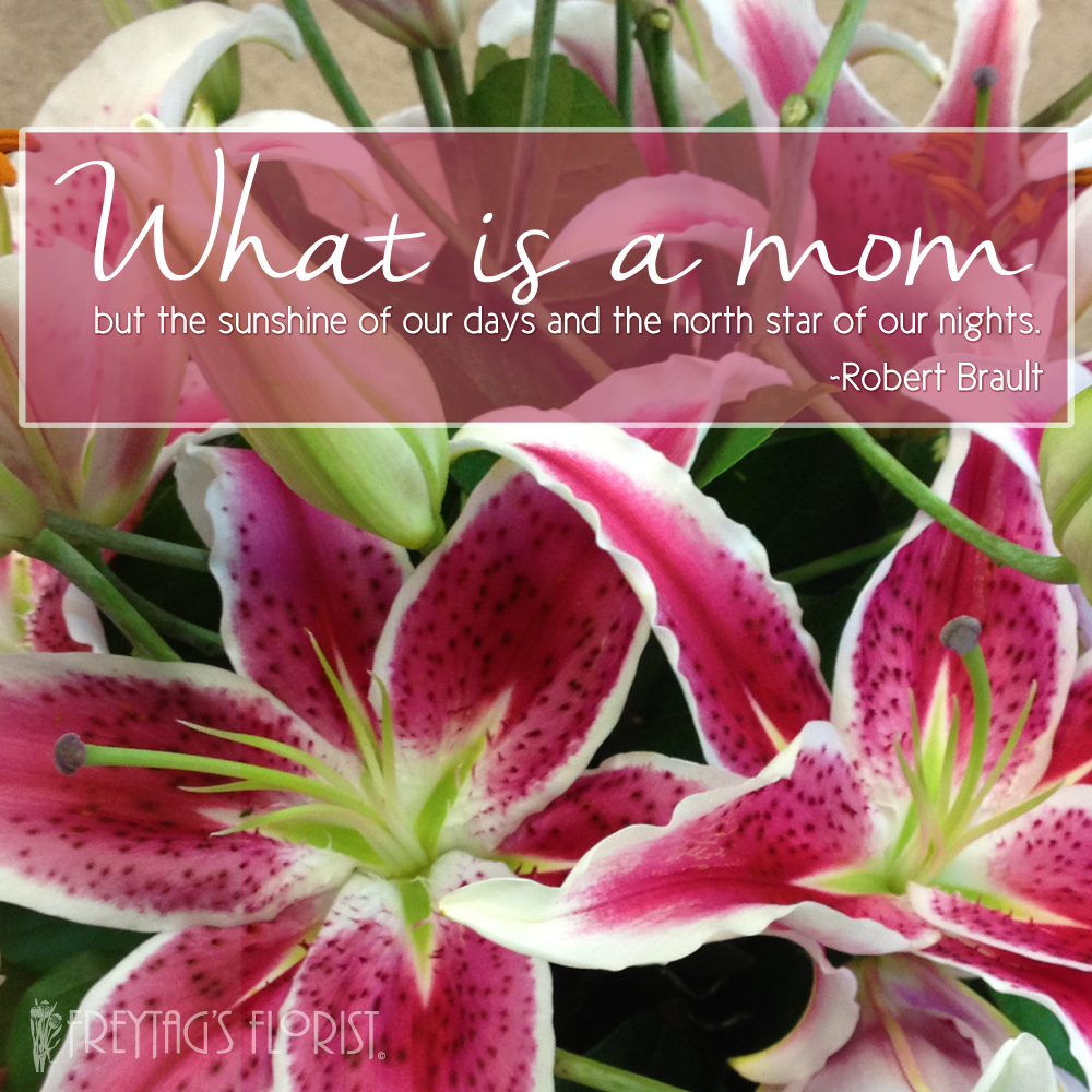 Mothers Day Quotes Freytags Florist Freytags Florist