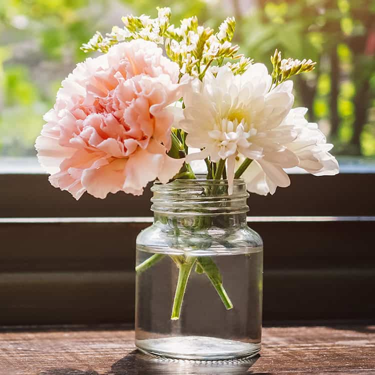 Small glass jar with 1 pink carnation and 1 white carnation in water in front of window