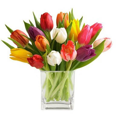 Cube of Mixed Tulips