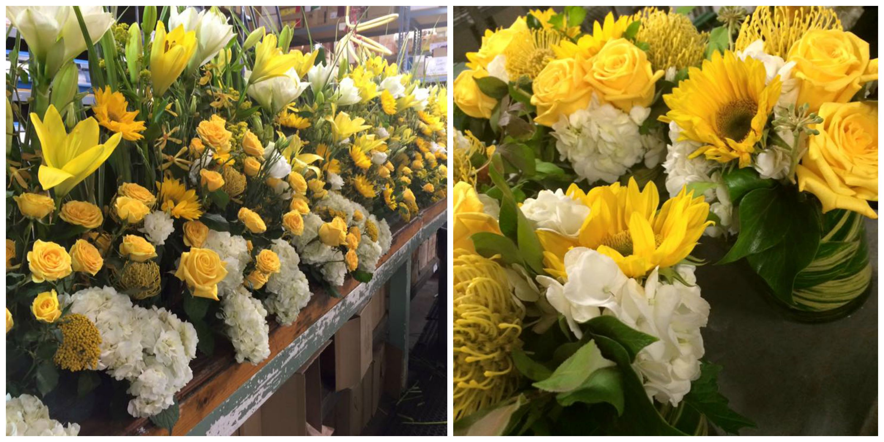 Robertson's design studio was buzzing with excitement as we prepared the flowers for a portion of the Papal visit.