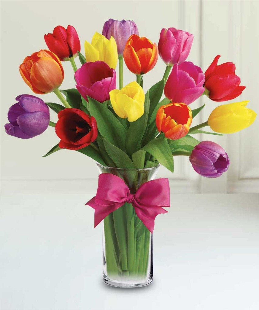 Everythings Coming Up Tulips