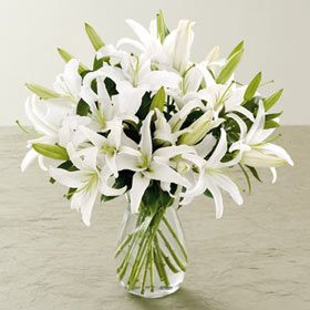 Lilies of the Field by Durocher Florist