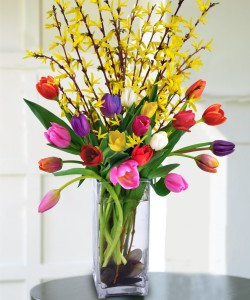 Tulips and Forsythia by Adrian Durban Florist